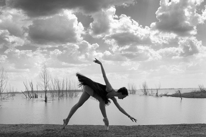 балерина, балет, пейзаж, девушка Черный лебедьphoto preview