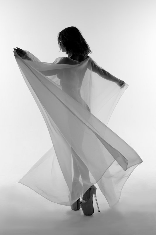 B&W, Oleg_Grachev,girl,dance, чёрно-белое, силуэт,красота, танец,Олег_Грачёв Силуэтphoto preview