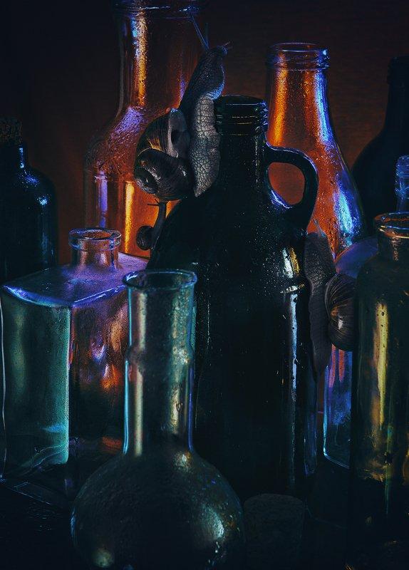 улитка, бутылки, стекло, натюрморт Гонкаphoto preview