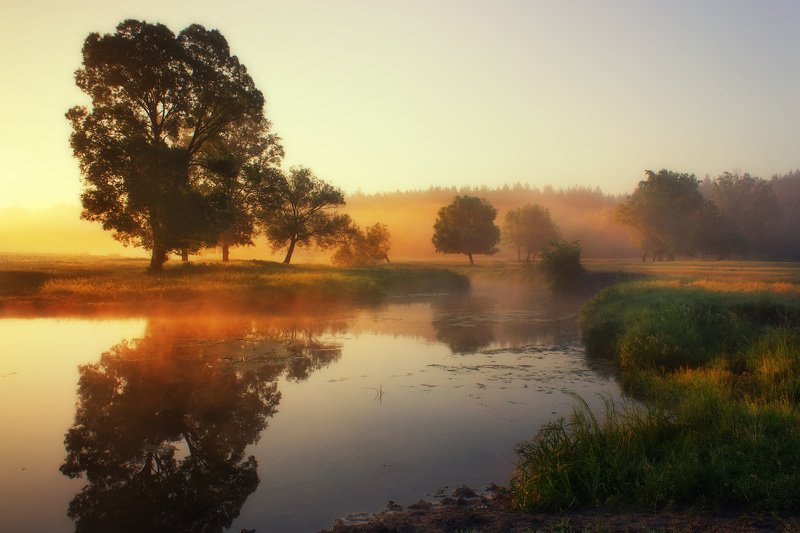 туман, утро, пейзаж, волчья, свет, харьковская, fog, morning, landscape, light Туманное утро на рекеphoto preview