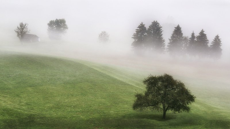 швейцария, альпы, туман Млечною лёгкостью манит туман...photo preview