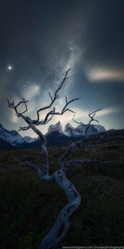 Ночь в Торрес дель Пайнеphoto preview