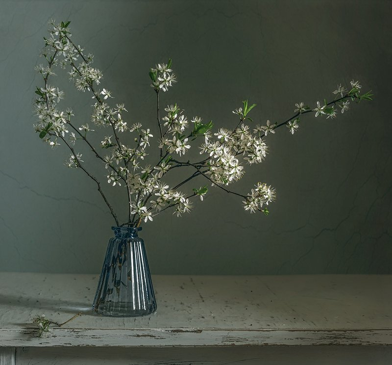 still life, натюрморт,    винтаж,    цветы,   ветка, растение, минимализм, весна, лето, весна в пастельных тонахphoto preview