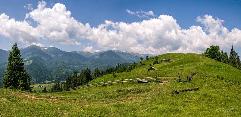 карпаты, горы, весна, дземброня, косарищенский хребет По горным дорогамphoto preview