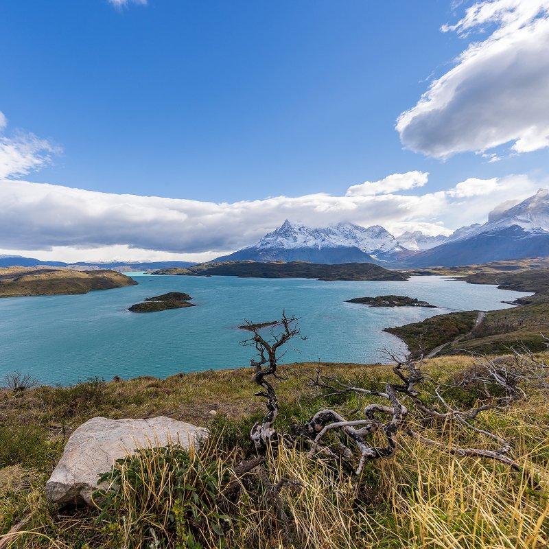 пейзаж, природа, парк,Торес дель Пайне, озеро Pehoe, Патагония, Чили  Национальный  парк Торес дель Пайне, озеро Pehoe, Патагония, Чили photo preview