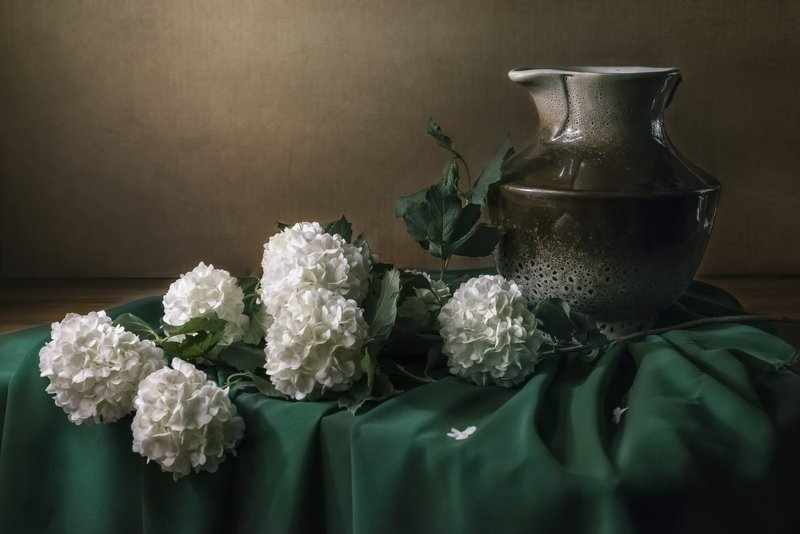 цветы, калина, кувшин, ткань, зелёный Калина бульдонеж и кувшинphoto preview