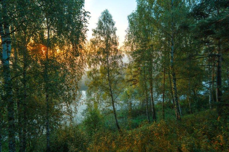 горы, облака, природа, рассвет, река, путешествие, россия Я в весеннем лесу пил березовый сок....photo preview