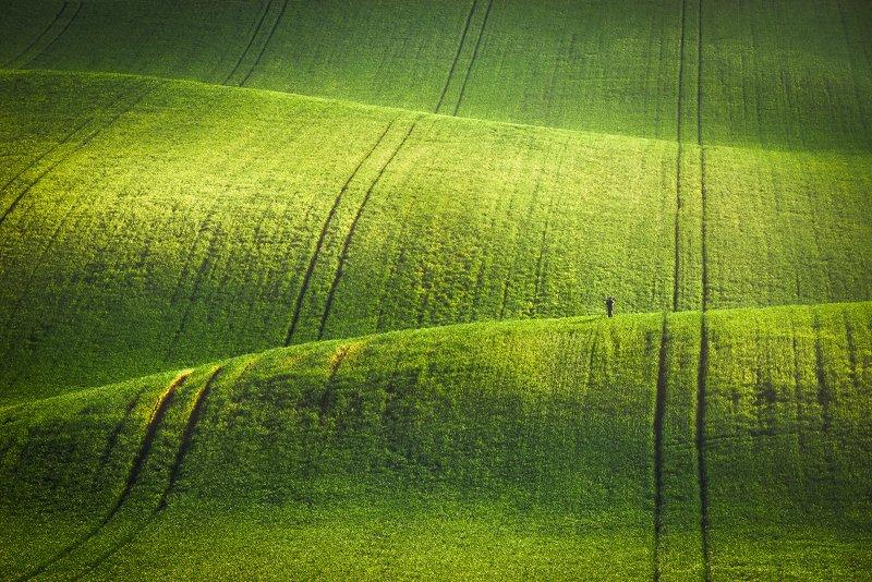 south moravia, czech, fields, spring Маленький фотографphoto preview