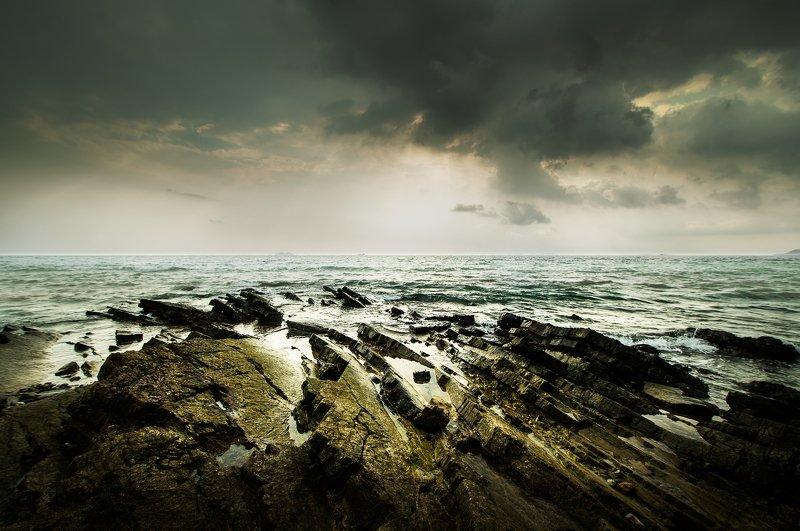 The seashore.photo preview