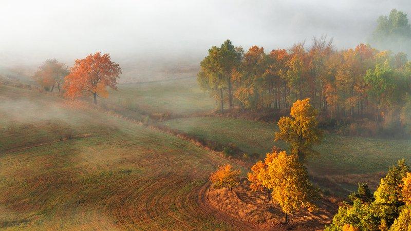 landscape,canon,mist,light,autumn The Last Walk in Autumn....photo preview