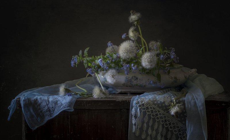 натюрморт,незабудки,одуванчики Незабудкиphoto preview