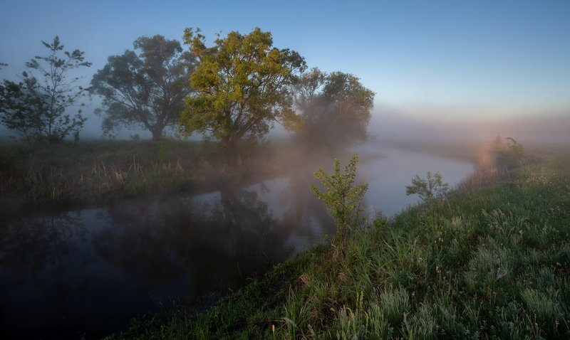 В лучах туманного утраphoto preview