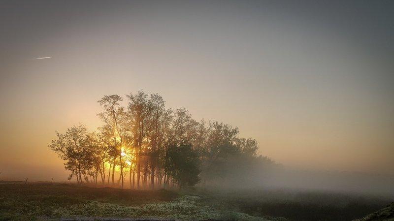 рассвет, утро, туман, солнце Рассветphoto preview