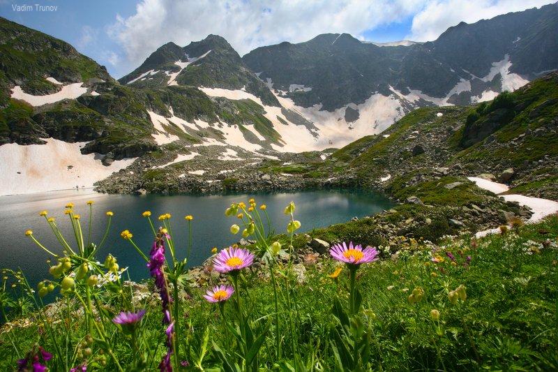 Цветы Дуккинского озераphoto preview