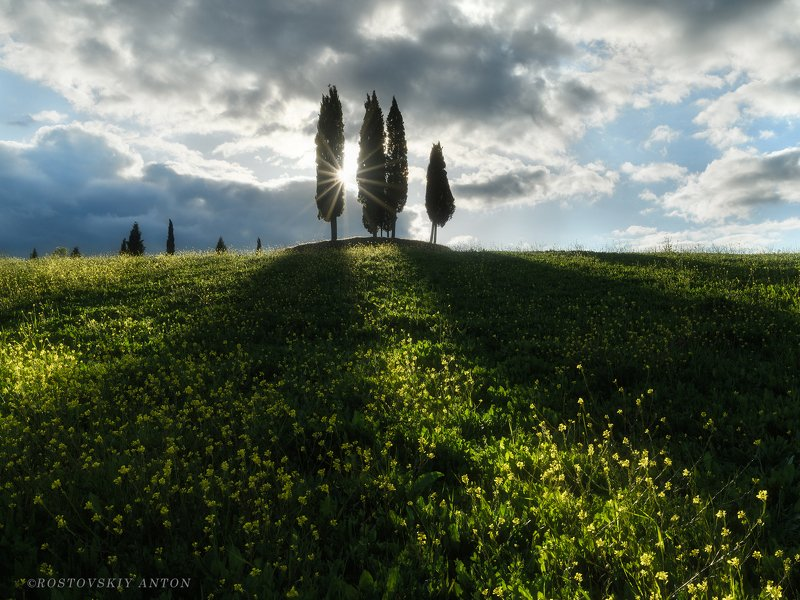 Тоскана, фототур, закат, лучи, кипарисы, Италия, Tuscany, Toscana, Italy, лучи вечернего солнцаphoto preview