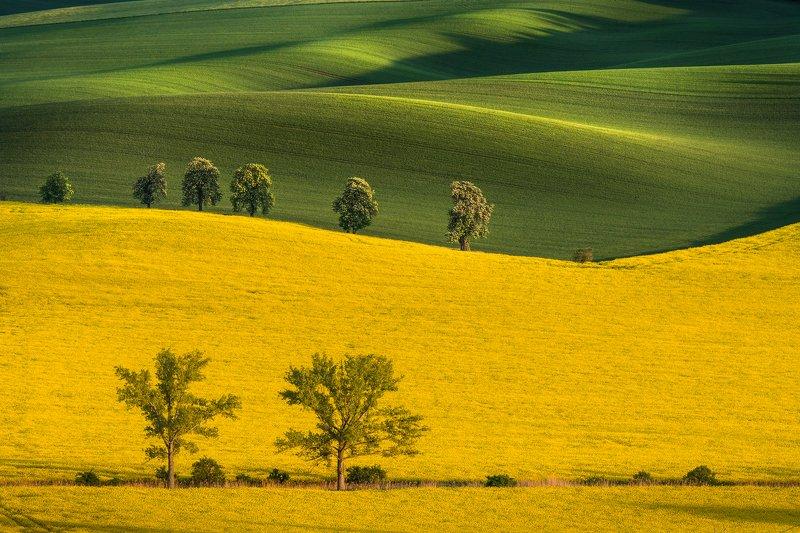 south moravia, czech republic, sunset, fields, hills, shadows, journey, travel \