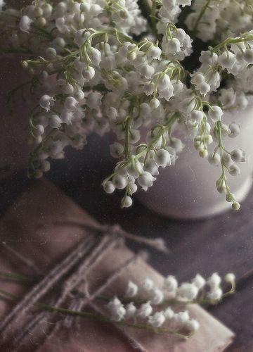 прозрачный аромат ландыша*