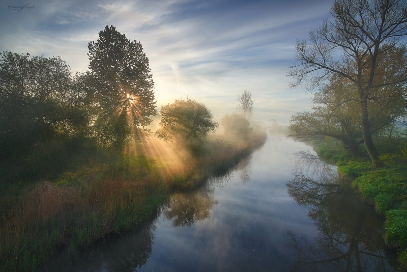 spring, nature, poland, landscape, river, fog, chełmno, ner, morning, magic, beautiful The Real Springphoto preview