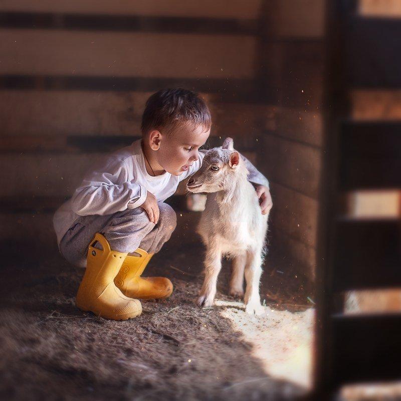 Мальчмк коза козленок секрет друзья деревня Тайна photo preview
