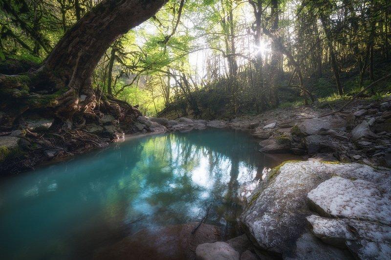 каньон, река, солнце, природа, кавказ Каньон реки Дзыхраphoto preview