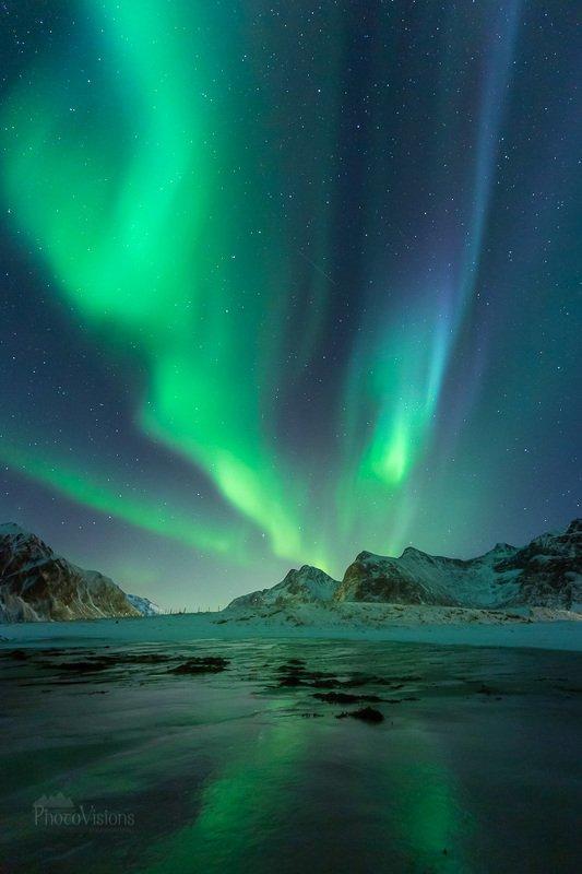 aurora, lofoten,norway,northern lights,aurora borealis,beach,shore,shoreline,coast,night,sky, Aurora show on the night sky фото превью