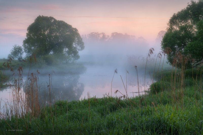 пейзаж, рассвет, весна,туман Майское утро, река Вязьма... фото превью