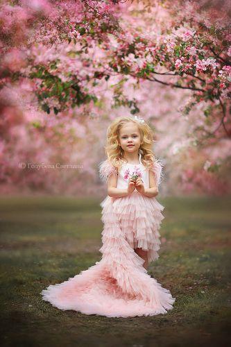 Весна в розовом саду