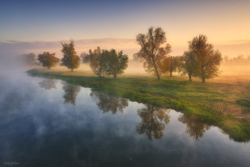 morning, ner, morning, dawn, spring, fog, willow, trees, river, nature photo preview