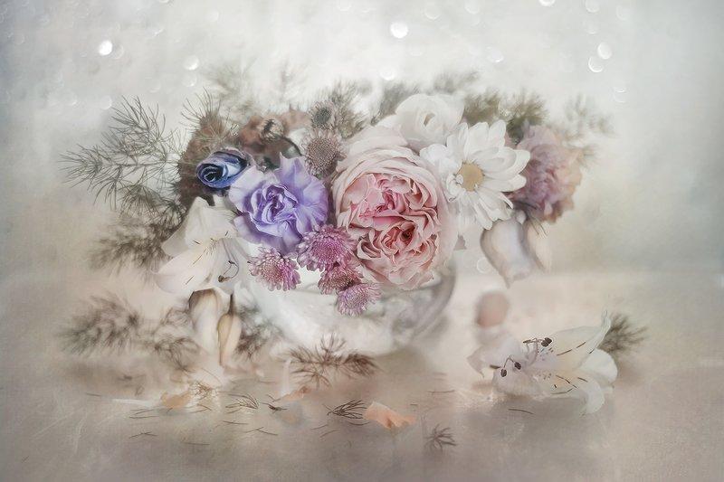 przyroda,natura,makro,martwa natura,kwiaty,flowers,still life photo preview