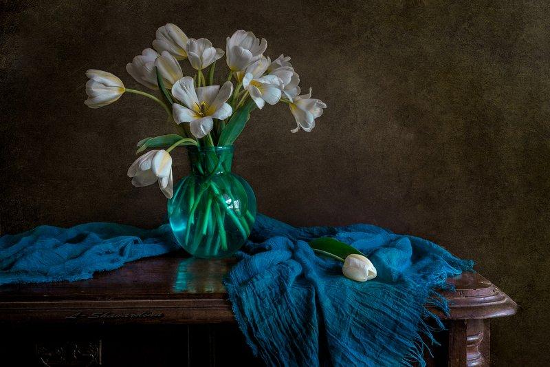 Белые тюльпаныphoto preview