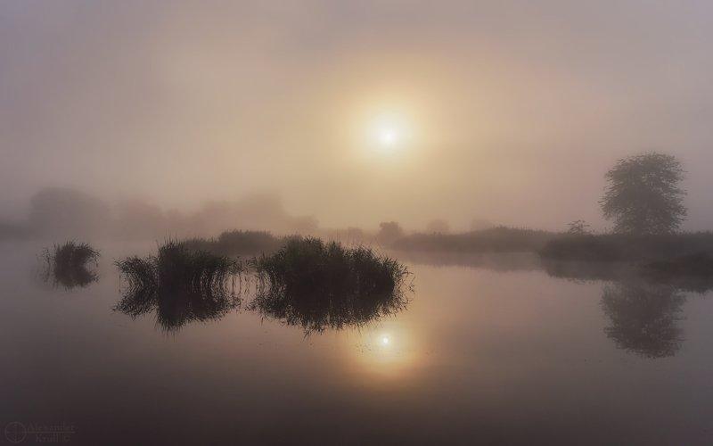 Утренняя феерия...photo preview