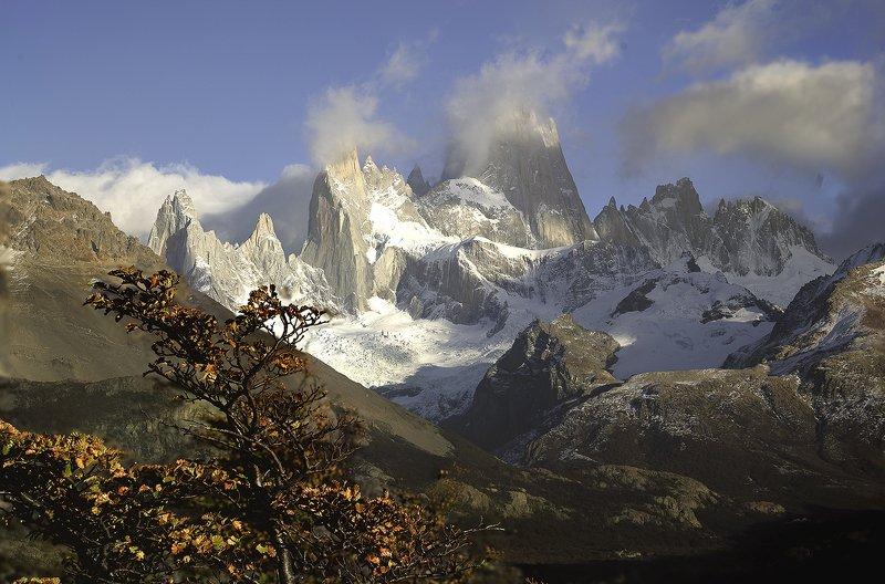 пейзаж,Гора, Фицрой, Патагония, Аргентина Гора Фицрой в облаках. Патагония, Аргентинаphoto preview