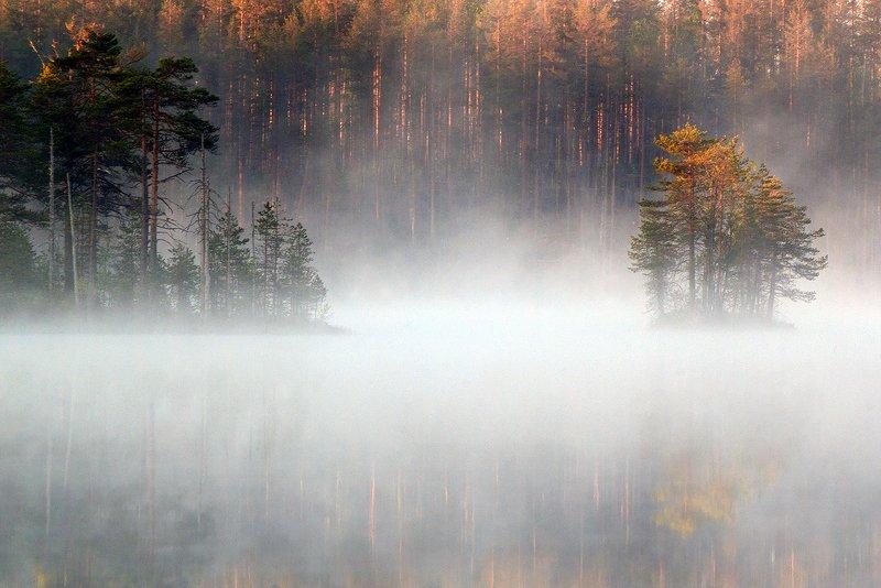 карелия Майским утромphoto preview