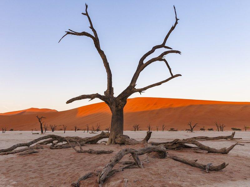 desert Namibia Deadvleiphoto preview