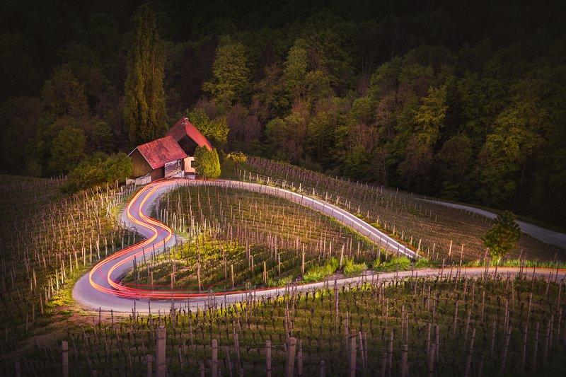 heart, road, slovenia, austria, spicnik, špičnik, vineyards, winery The road of lovephoto preview