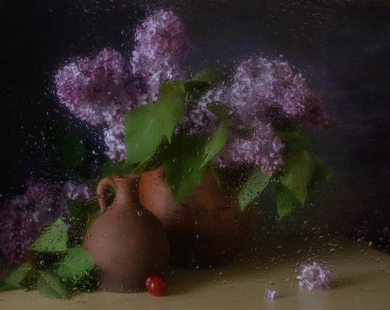 натюрморт,сирень,цветы,капли майский дождь...photo preview