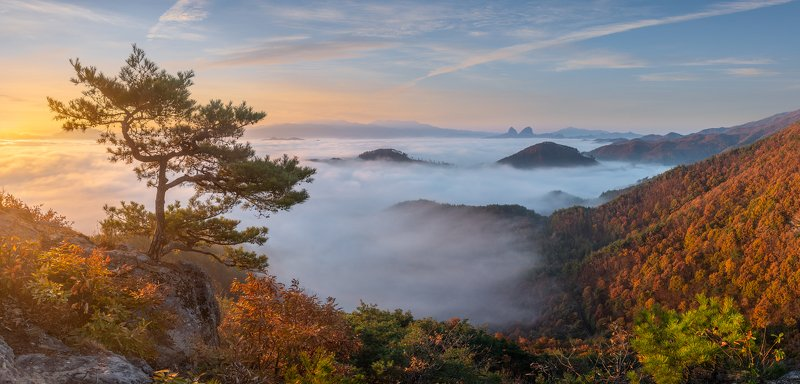 clouds, autumn, tree, mountains, dreamy, misty, pine, sunrise Deep Autumn Morning with Maisanphoto preview