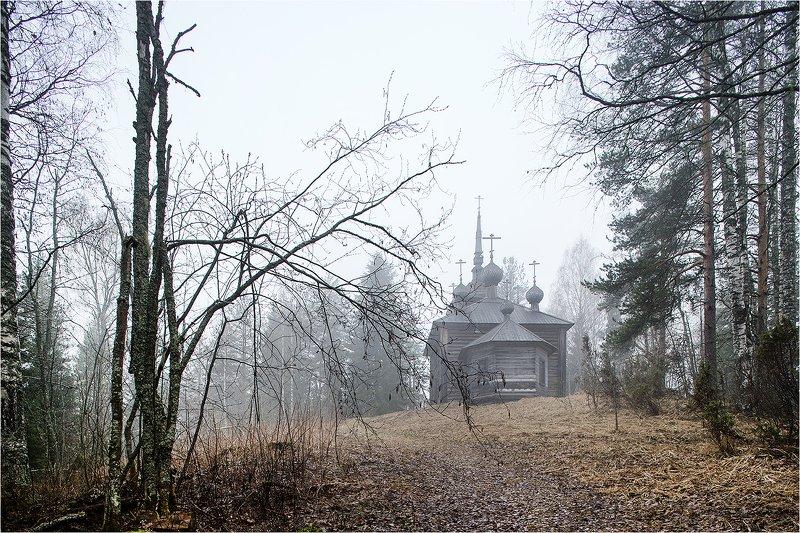 весна, май, лес, гора, хижгора, деревянный храм, кенозёрский парк, Утро с лёгким туманом.photo preview