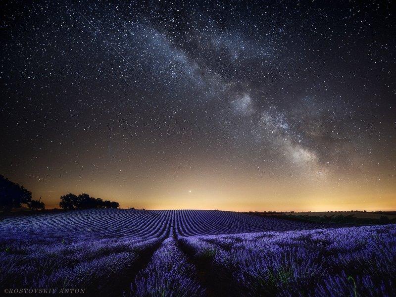 Ночь, Млечный путь, звёзды, поле, Прованс, лаванда, фототур, фотопутешествие, Lavender nightphoto preview