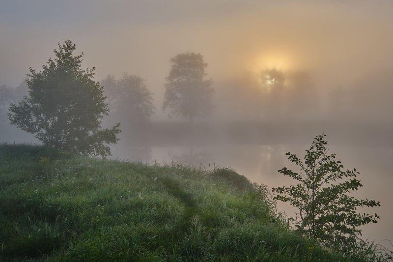Солнце, прорывающееся сквозь туманphoto preview