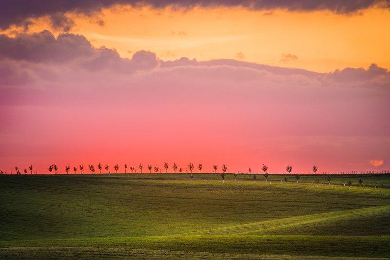 moravian, south moravia, sunset, hills, fields Моравские закатыphoto preview