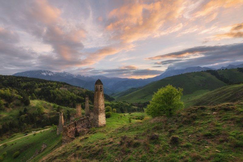 кавказ, ингушетия, башни, заповедник, эрзи, закат, май Ингушские башниphoto preview