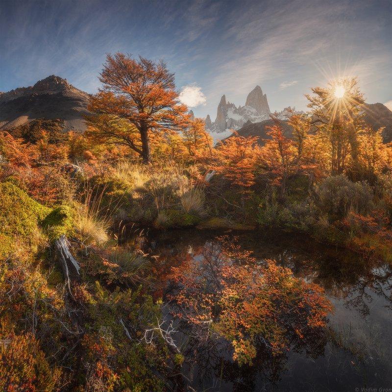 патагония, фицрой, patagonia, fitzroy Краски осенней Патагонииphoto preview