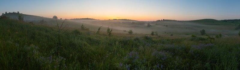 пейзаж, утро, туман, рассвет, июнь, лето, лесостепь, холмы утро туманное, утро седоеphoto preview