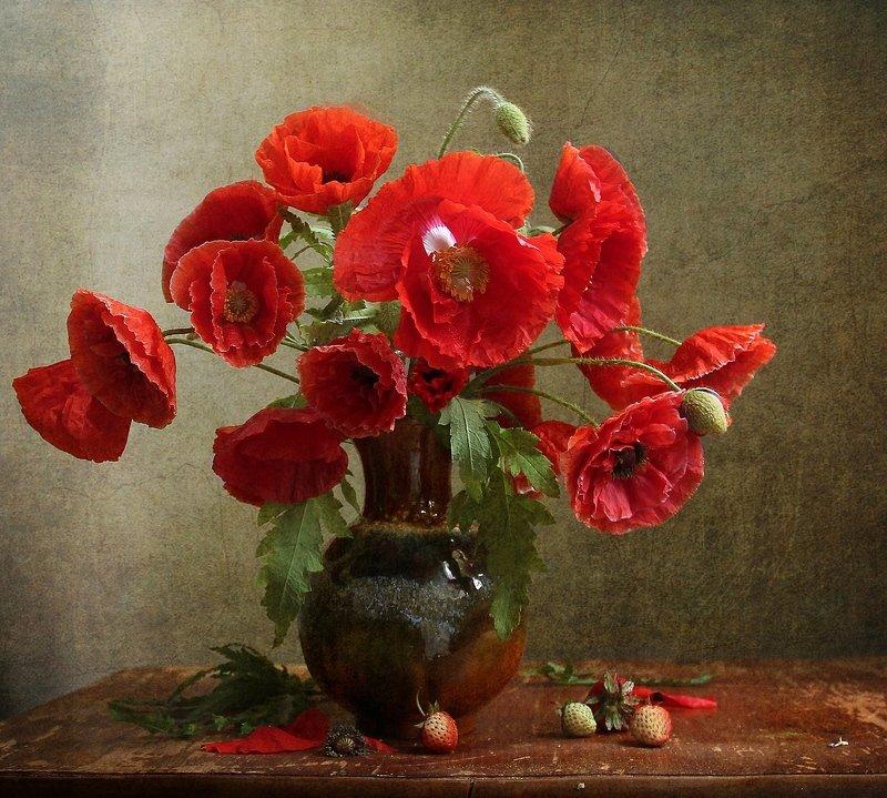 лето, натюрморт, букет цветов,маки,  тюльпаны, марина филатова Маки (2)photo preview