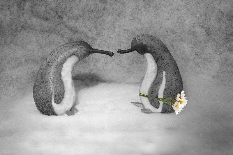 Из жизни пингвогрушphoto preview