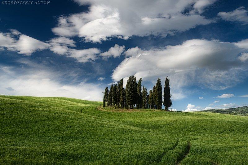 Тоскана, фототур, кипарисы, облака, Италия, зелень, Tuscany Colorsphoto preview