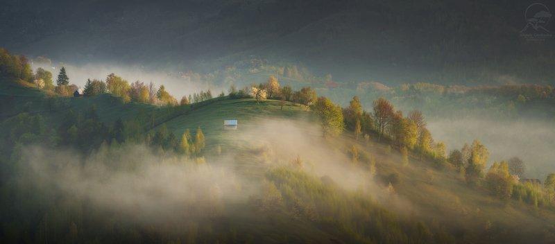 пейзаж, природа, горы, румыния, туман, карпаты Утро в горах фото превью