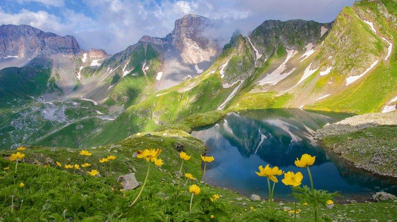 кавказ,горы,цветы нас зовут цветочные поляныphoto preview