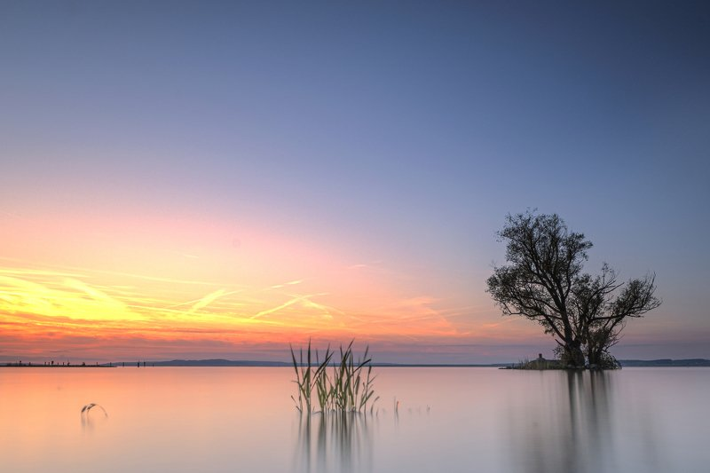 tree,lake,boden lake,long exposure,sunset,minimalistic, silent in the artphoto preview